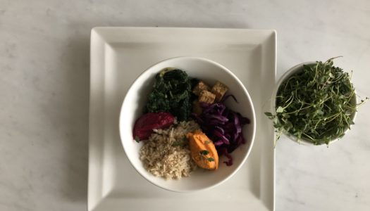 BROWN RICE WITH PUMPKIN CREAM, TEMPEH AND SEASONAL RAW AND SAUTE' VEGETABLES